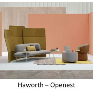 Haworth Openest Chick 1